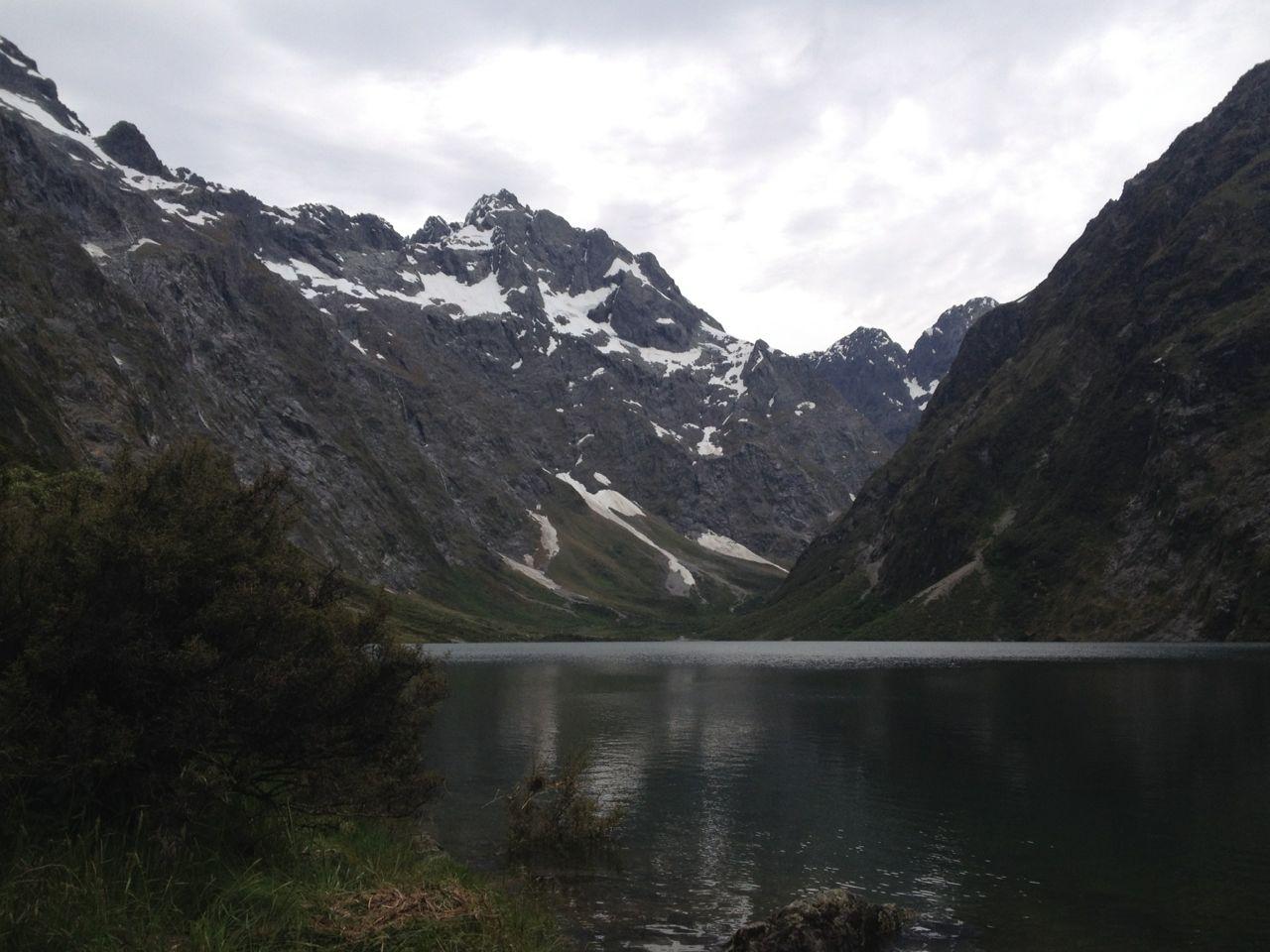 Dijkstra S In Nieuw Zeeland